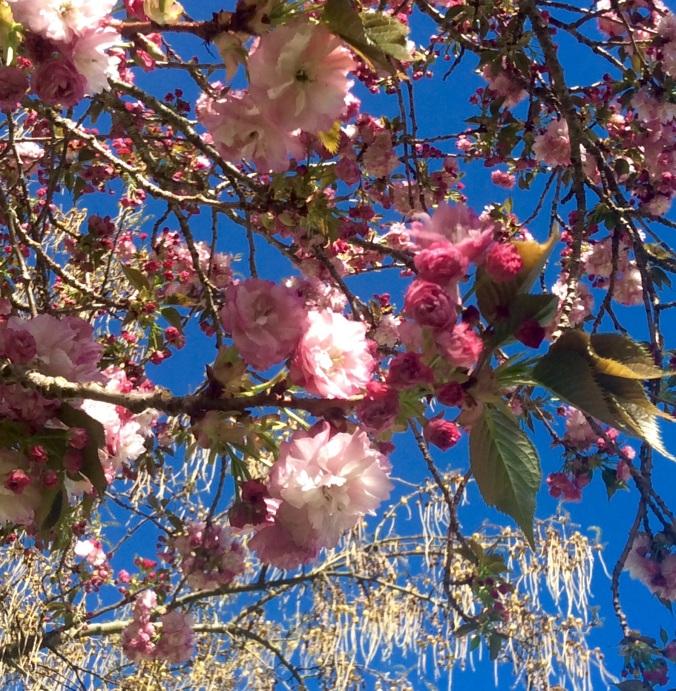 Wow. Spring, springing