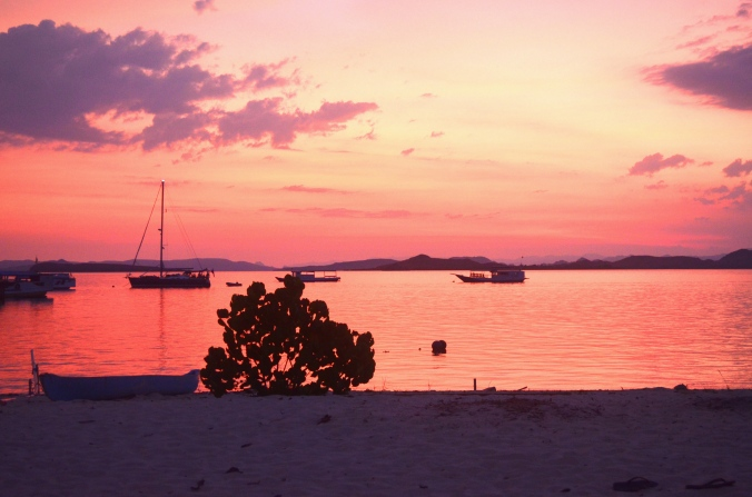 This is not the pink beach but it is Kanawa island shrouded in a rosy sunset.